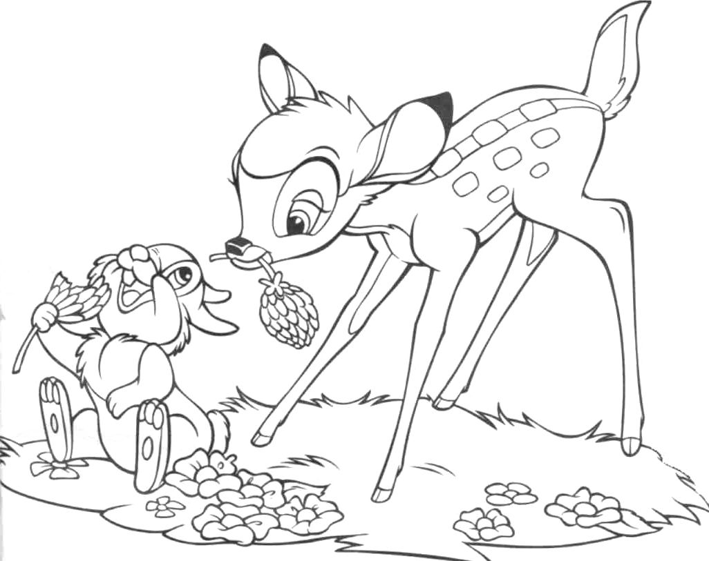 Feed The Thumper Coloring Pages Bambi Car Coloring Pages Deer