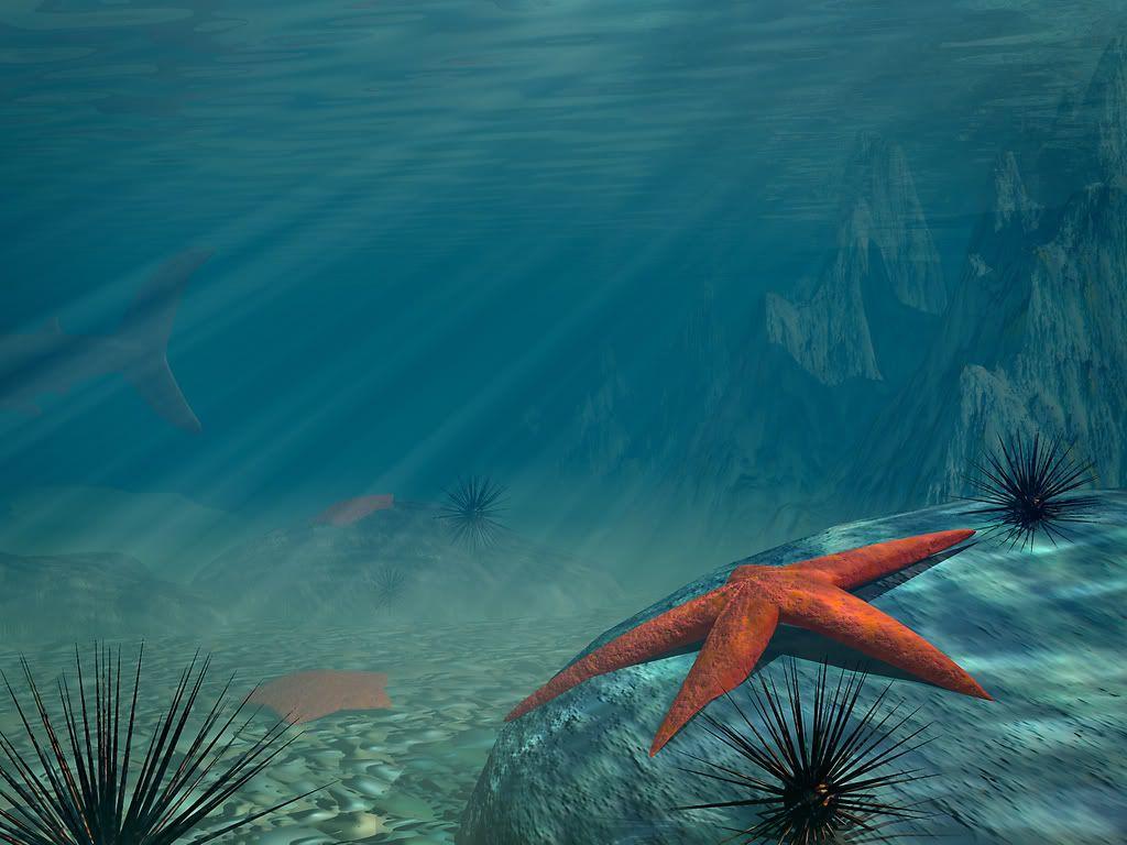 under the ocean Under The Sea