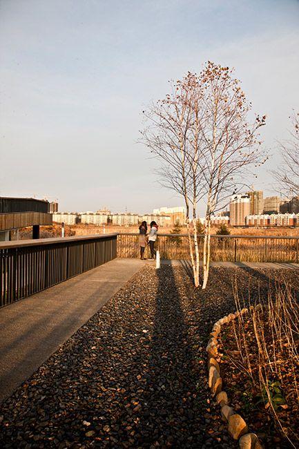 Qunli_National_Urban_Wetland-by-Turenscape-landscape_architecture-30 « Landscape Architecture Works | Landezine Landscape Architecture Works...