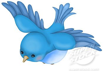 Cinderella's bluebird