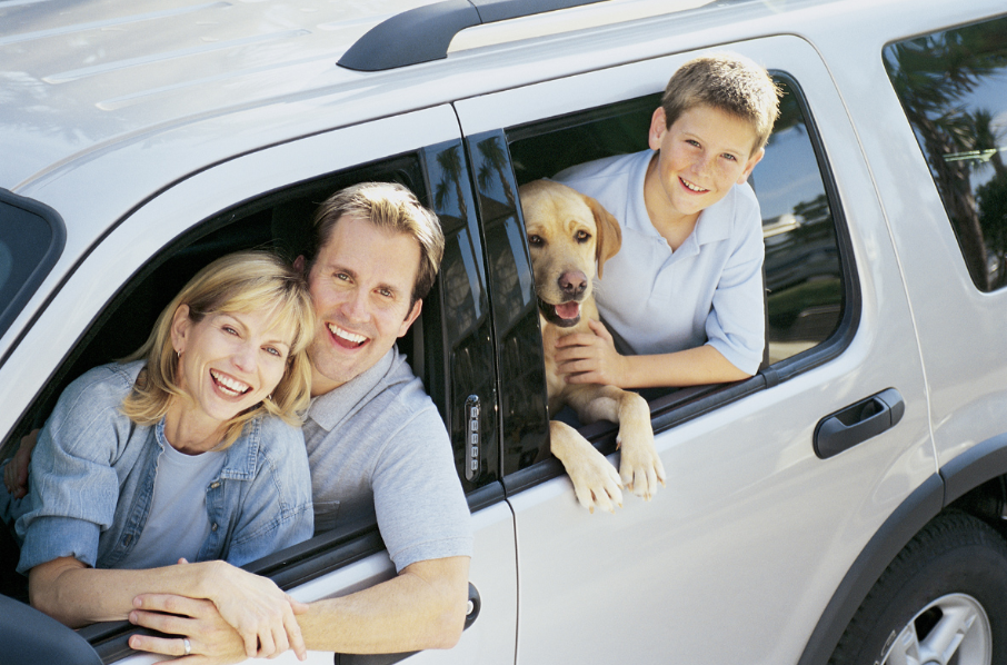 Car Insurance In Oshkosh And Plymouth Wi Pet Travel Pets Dogs