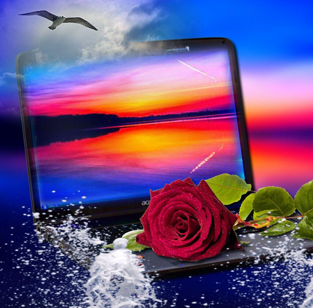 via imikimi iPad this frame