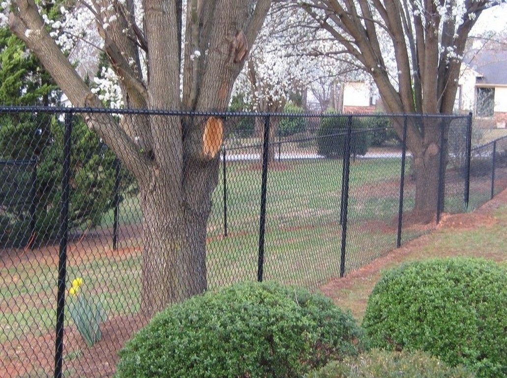 5ft Vinyl Coated Chain Link Fence Vinyl Coated Chain Link Fence Pertaining To Dimensions 1031 X 770 Black Chain Link Fence Chain Link Fence Vinyl Fence