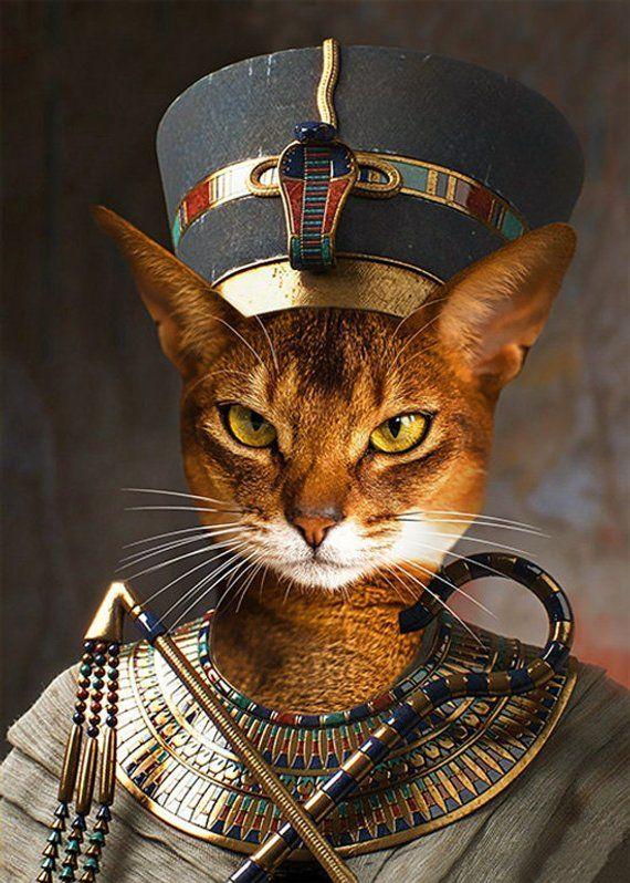 Egyptian Cat Egypt Queen Art Animal Photo Nefertiti Pet Portrait Gift for Cat Lovers Print - Neferkitty