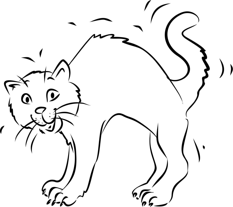 Katzen Ausmalbilder Online : Niedlich Ausmalbild Einer Katze Fotos Malvorlagen Von Tieren