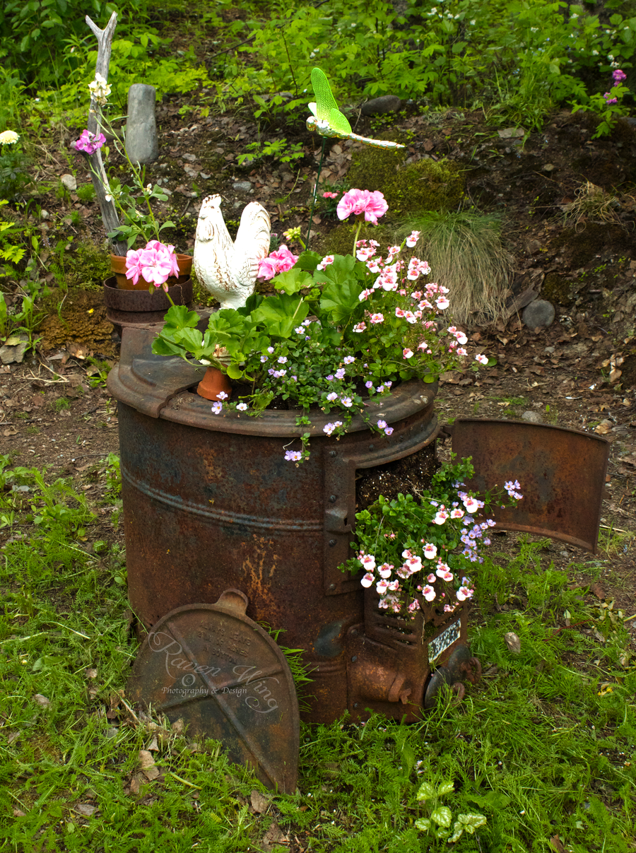 flower wood stoves garden | Old Wood Stove by RavenWingPhotography ...
