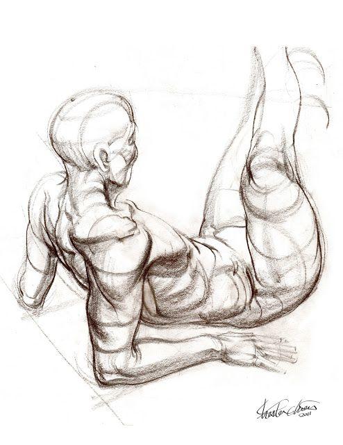 Chester Chien: 10 mins Anatomy Study | Art | Pinterest | Chester ...