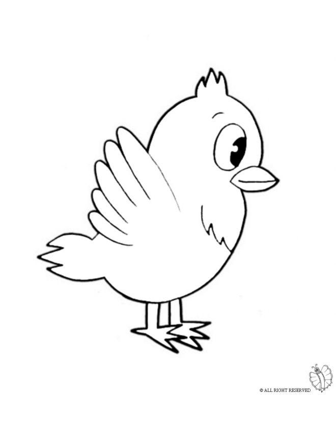 Disegno Di Uccello Da Colorare Per Bambini Gratis