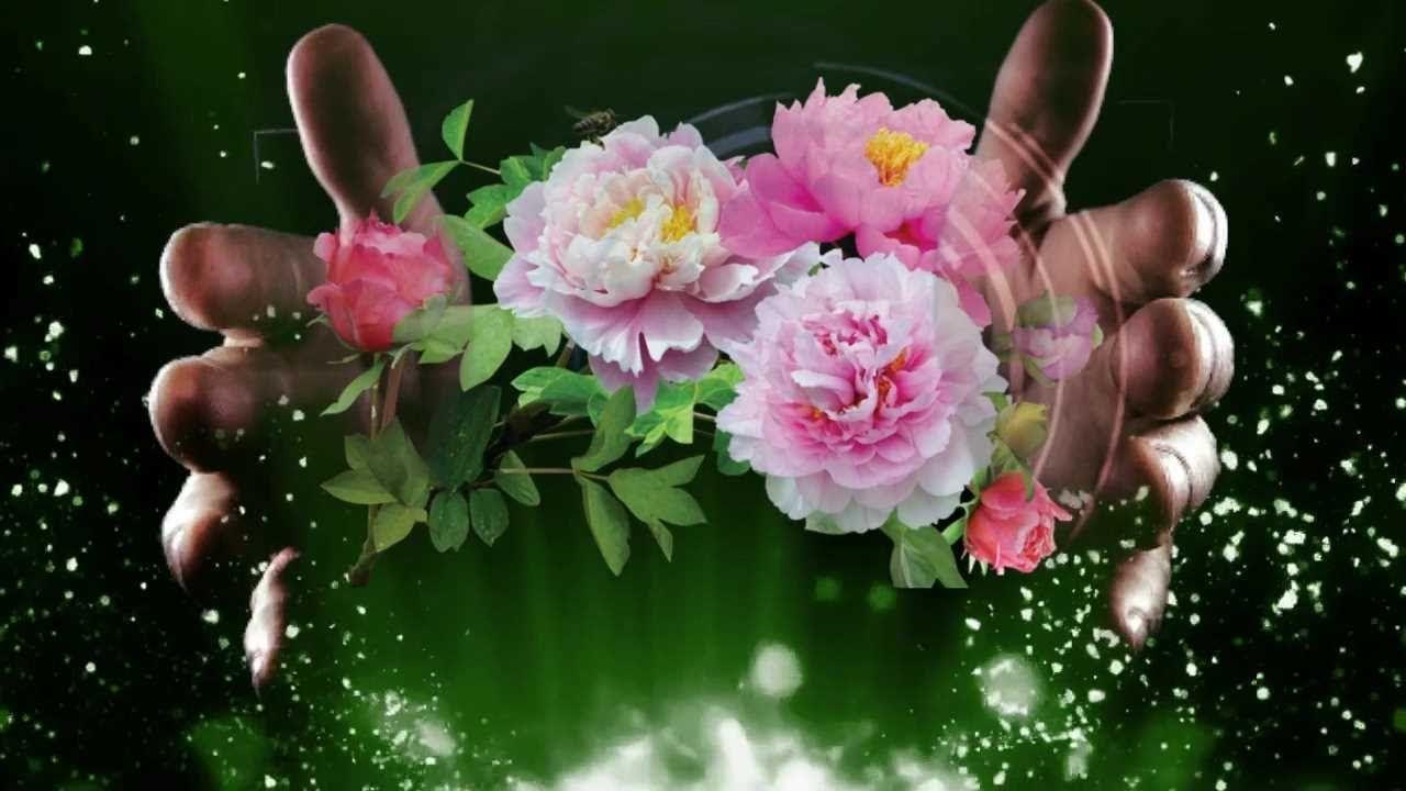 Я дарю вам цветы картинки