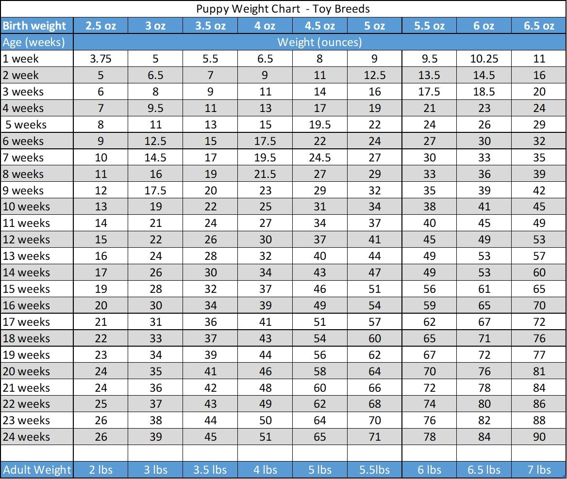 Puppy Weight Chart This Is How Big Your Dog Will Be Puppy Growth Chart Weight Charts Labrador Puppy