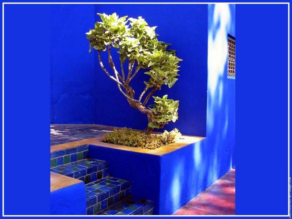 Charmant Achat Peinture Bleu Majorelle 11 Photo Maroc