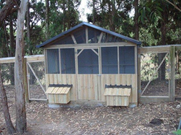 Plans to build a chook house