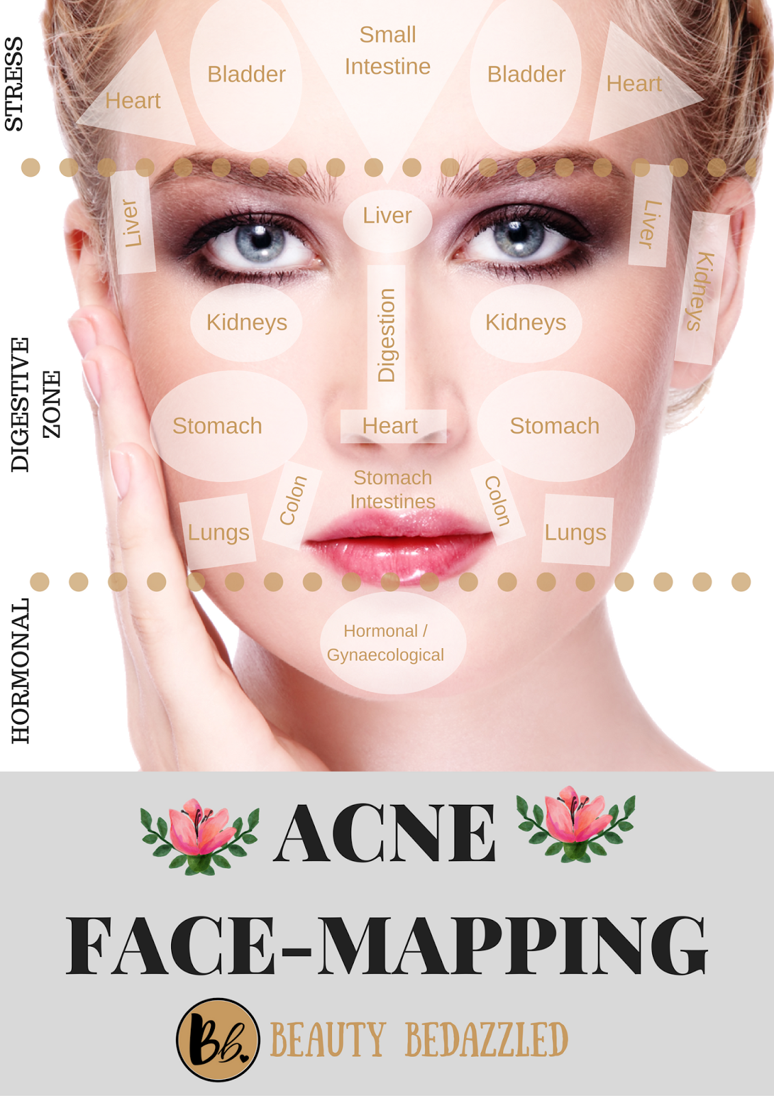 Acne Face Mapping What Does Your Acne Tell YOU Life Hacks - Face map for acne