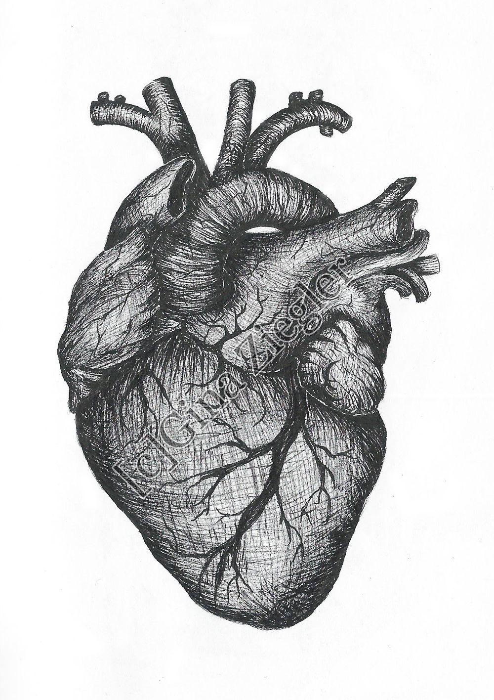 real heart - Google Search | Zeichnungen von herzen