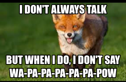 02087125b498089bedb6e6452064456f what does a fox say? u just got pwned (funny) pinterest
