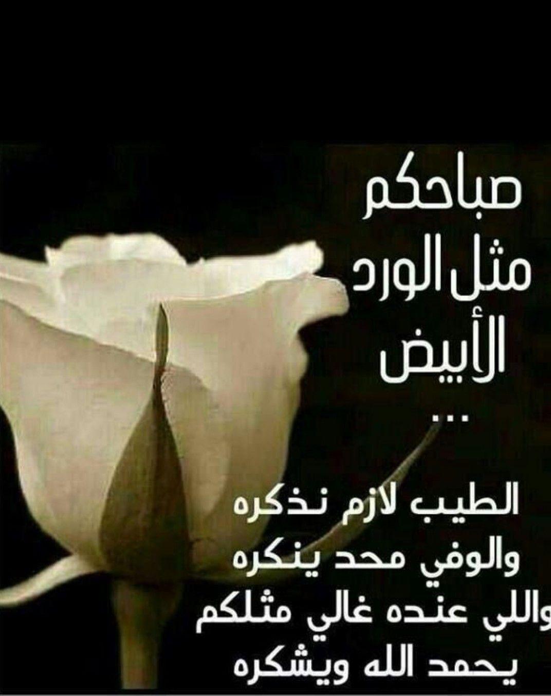 Pin On اللهم إنا نعوذ بك من الهم والكسل والحزن ومن العجز والألم صباحكم فرح
