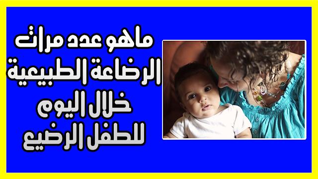 ماهو عدد مرات الرضاعة الطبيعية خلال اليوم للطفل الرضيع حصول الطفل على ما يكفي من الطعام Breastfeeding Baby