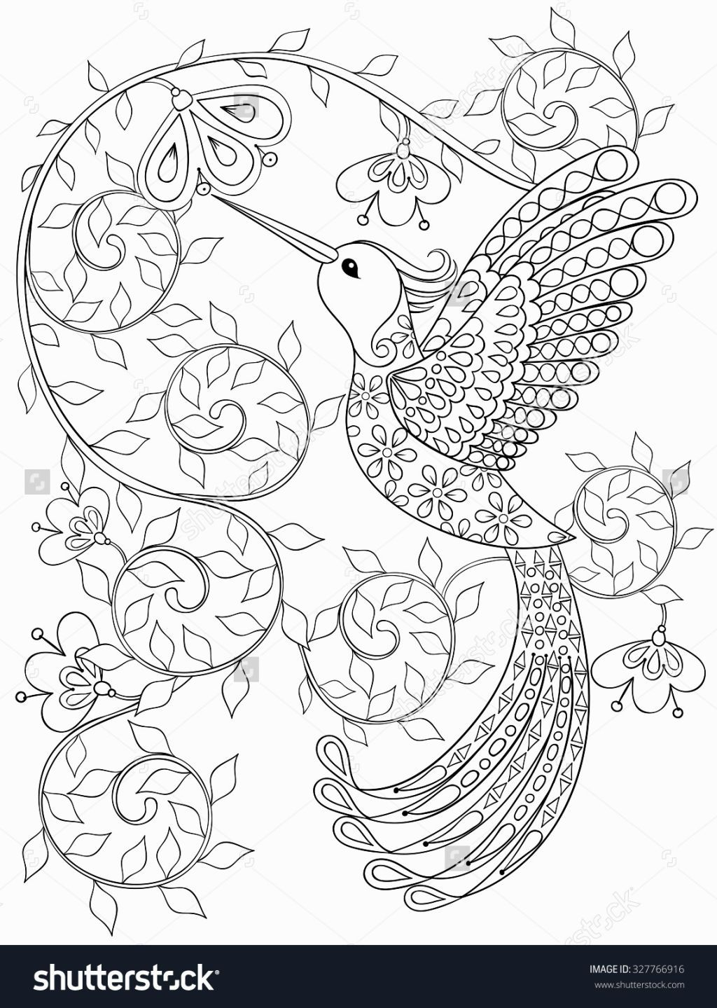 Coloring Book Hummingbird Coloring Pages Pinterest Adult