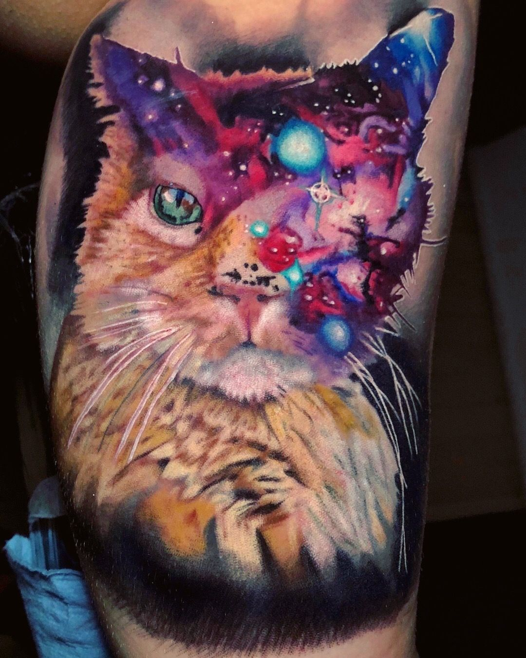 Pin By Kayleen Campbell On Tattoos Old Cats Cat Tattoo Galaxy Cat