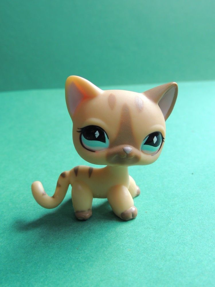 LPS Littlest Petshop persian chat EUROPEEN short hair cat KITTEN EU Toy