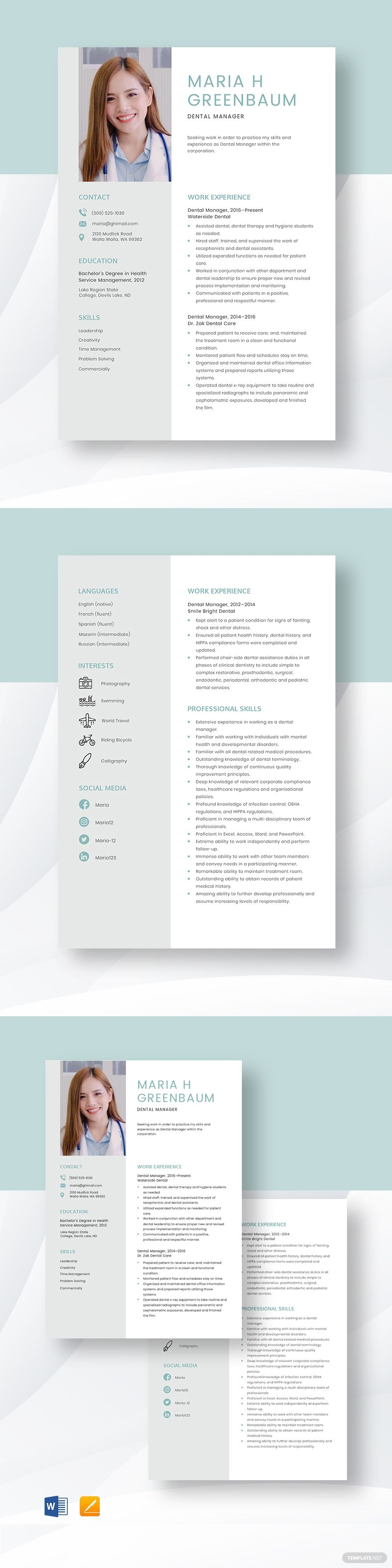 Dental manager resume template in 2020 website template