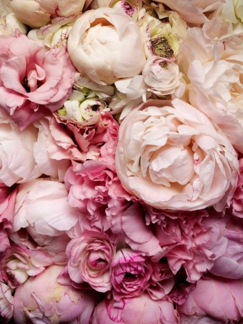 We lose sleep over it. We sleep better with it. It is (and should be) the furthest thing from a trend and yet it's the coolest, best, most fulfilling thing out there. LOVE. (peonies for your love)