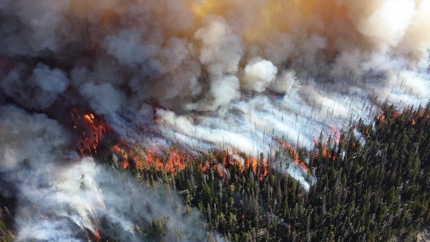 The Impact Of Forest Fires On Air Pollution Climate Change