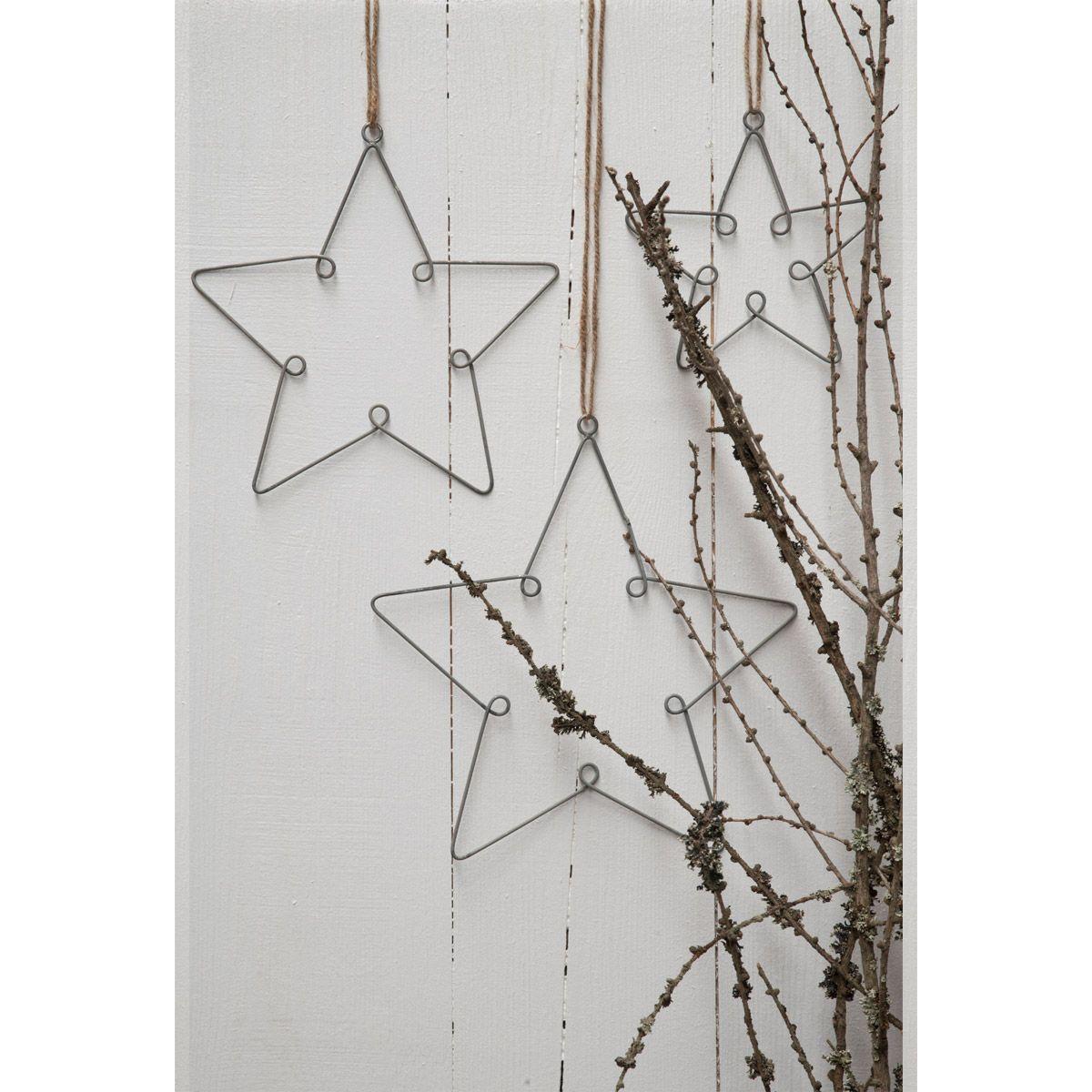 Drei Sterne für Ib Laursen: eine herrliche Baum-, Wurzel- oder ...