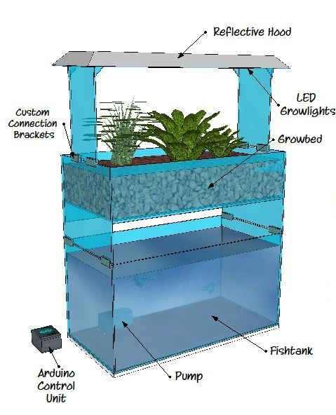 Small Aquaponics System Design Check Out My Personal Aquaponics Project At