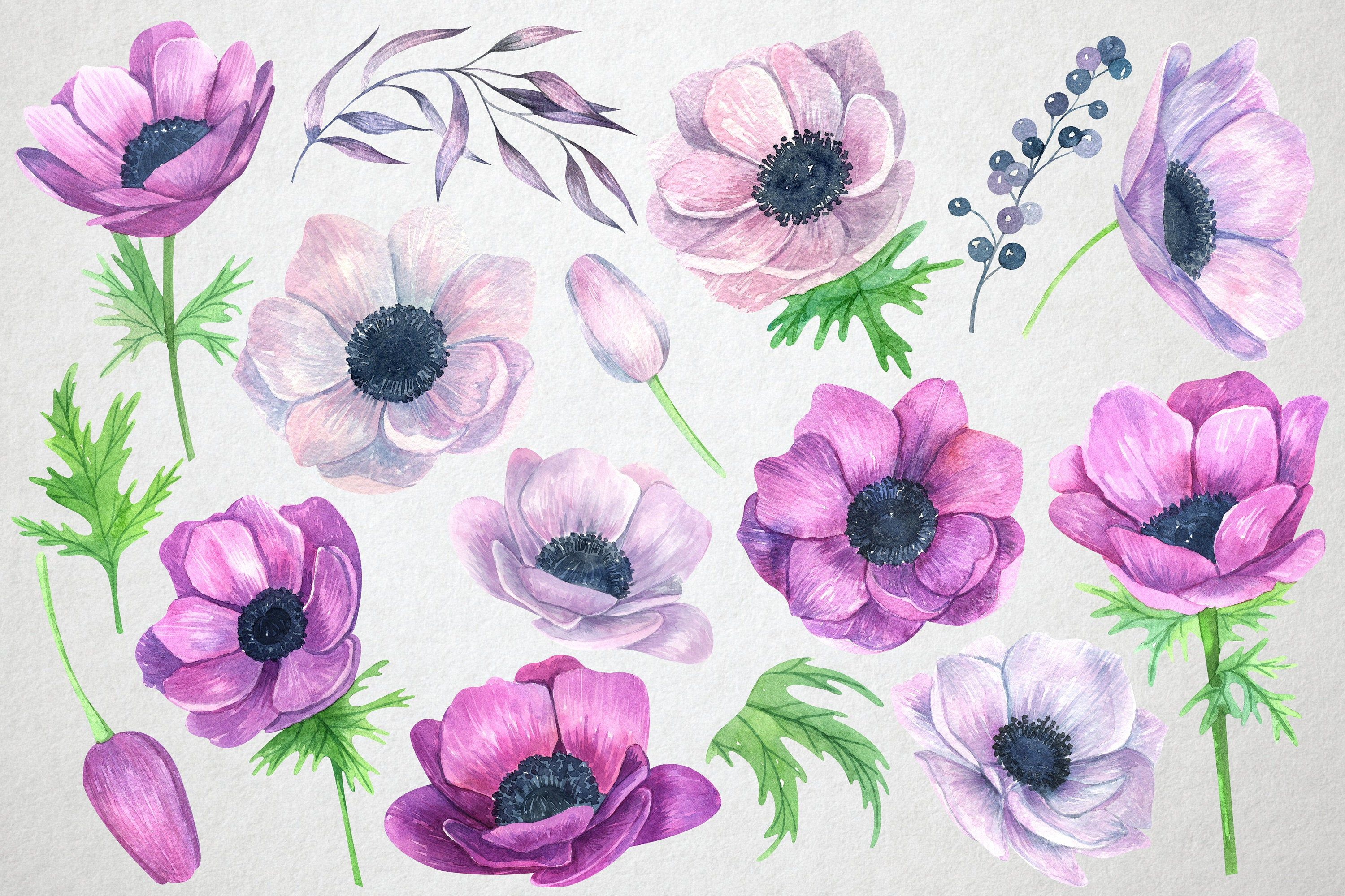 Watercolor Anemone Flowers Clipart Wedding Floral Clipart Etsy In 2020 Watercolor Flower Prints Floral Watercolor Watercolor Flowers