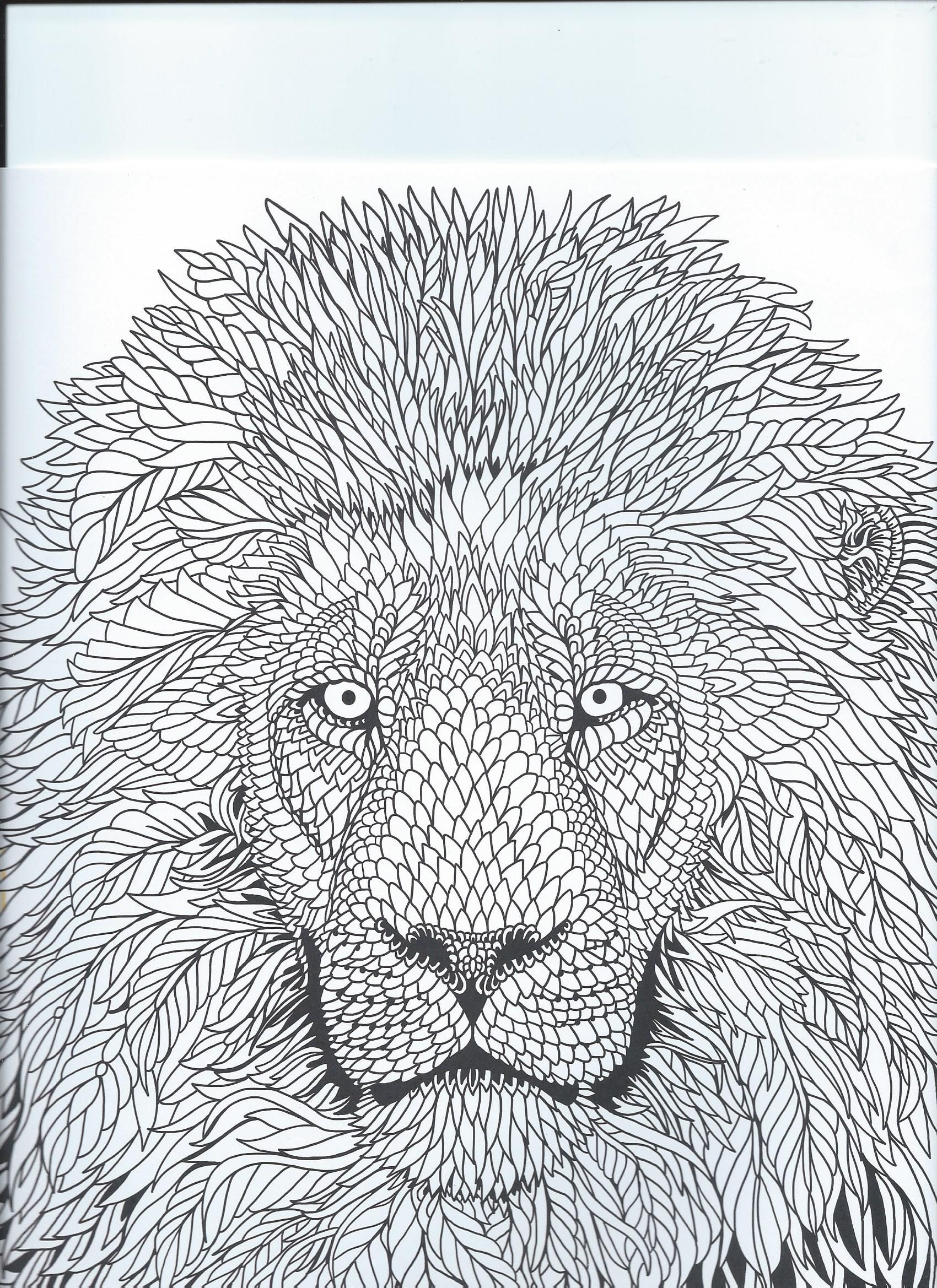 "From the coloring book ""The Menagerie"" animal portraits"