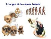 perfil de IES Suel - Ciencias Naturales