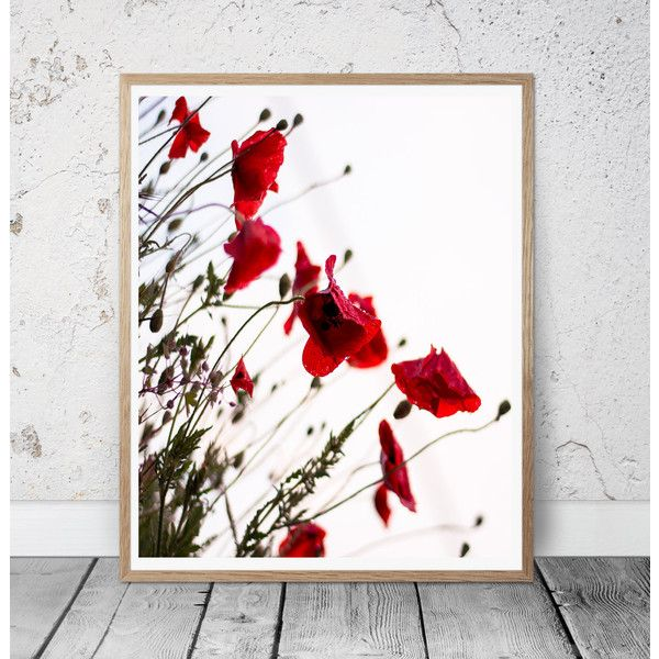 poppy flower print poppy wall art floral wall decor flowers... (15 BGN) ❤ liked on Polyvore featuring home, home decor, wall art, poppy wall art, poppy flower wall art, photographic wall art, floral home decor and red home decor