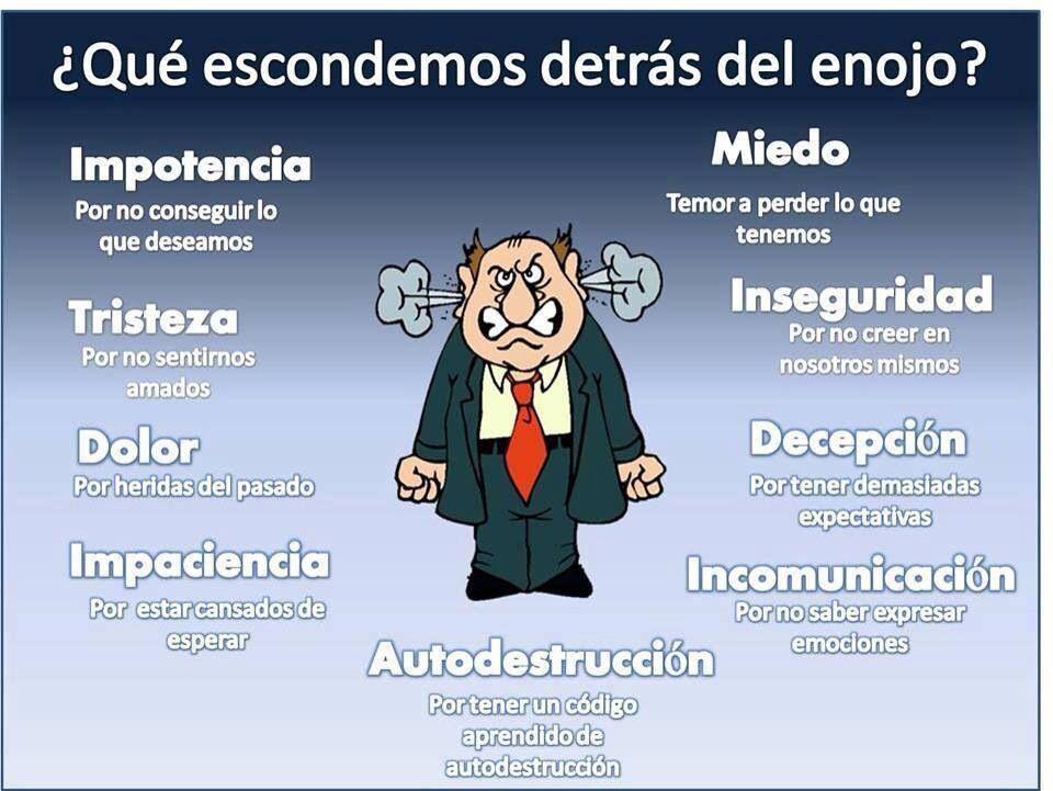 Frases De Personas Exitosas: Personas Felices Personas Exitosas, Empresas Felices