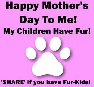 Pin By Amber Delatorre On Mom Mothers Mother S Day Happy Mothers Day Happy Mothers Child Love