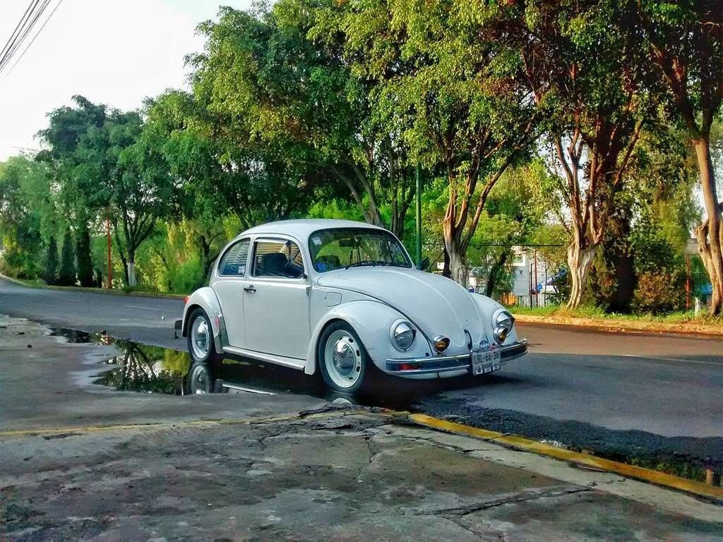 Once años con migo y no le duele nada!! #vw #vwlife #vwoldbeetle #vwbeetle #fusca #fuscagram #kafer #beetle by romi https://t.co/otkIrFXdJF May 27 2016 at 03:22PM