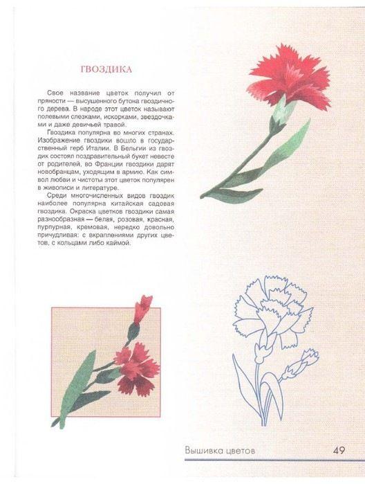 Gallery.ru / Фото #51 - Живописная вышивка гладью. Цветы и ...