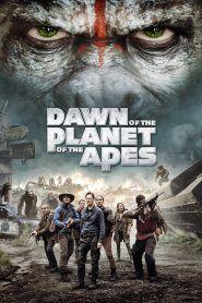 Maymunlar Cehennemi şafak Vakti Izle Ogfrm Hd Film Izle Film