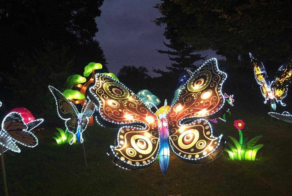 020d6916747d30942b3f5ff920687bce - Chinese Lantern Festival Boerner Botanical Gardens