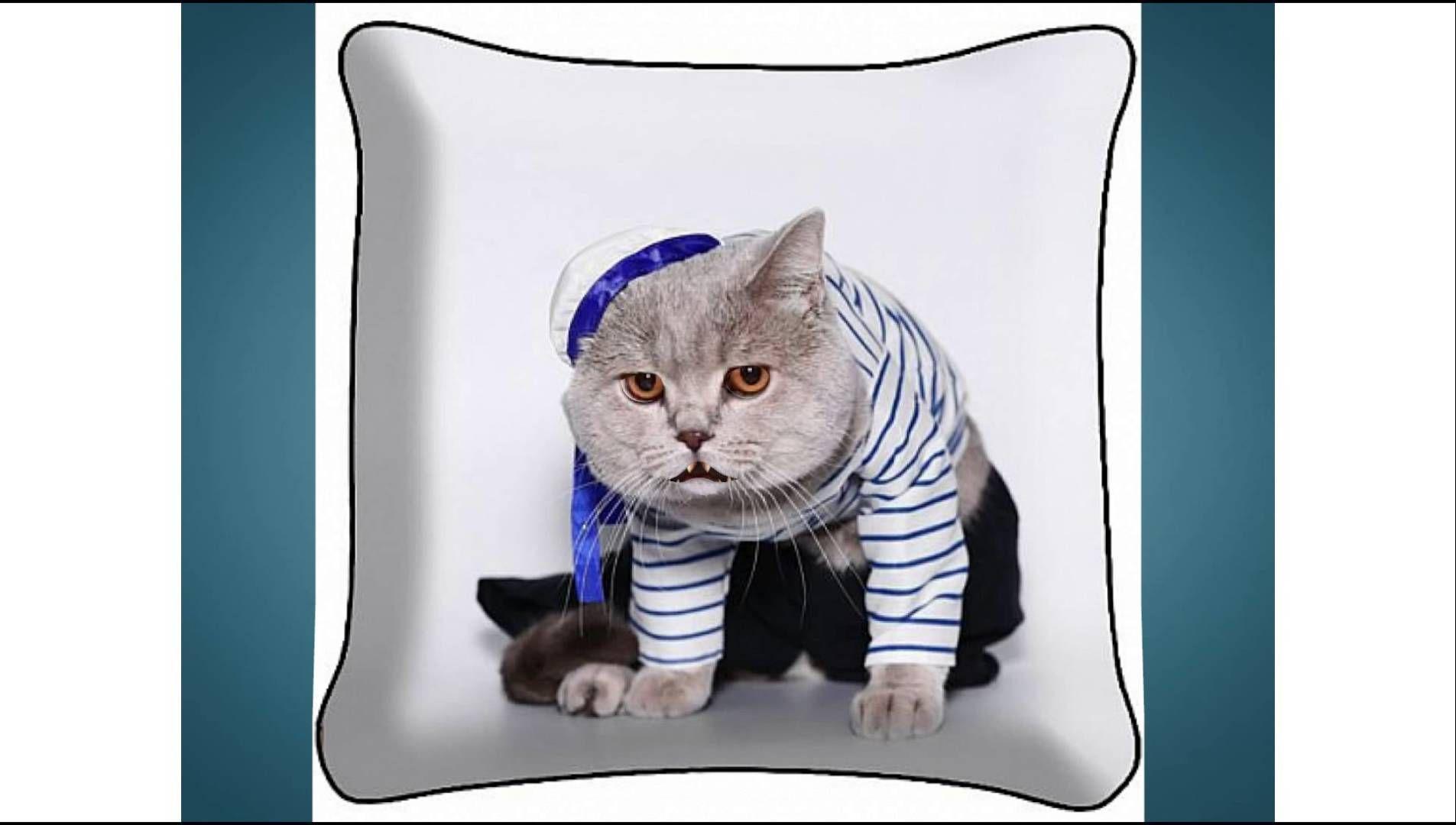 Поздравление кота матроскина с днем рождения фото 311