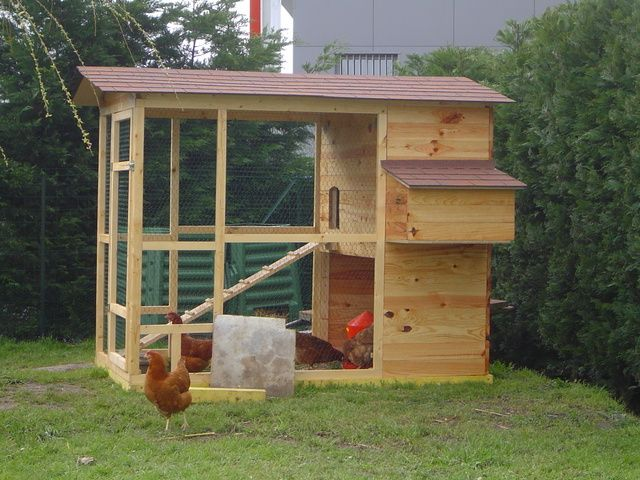 poulailler en bois pour le bien tre de nos poulettes chicken coop. Black Bedroom Furniture Sets. Home Design Ideas