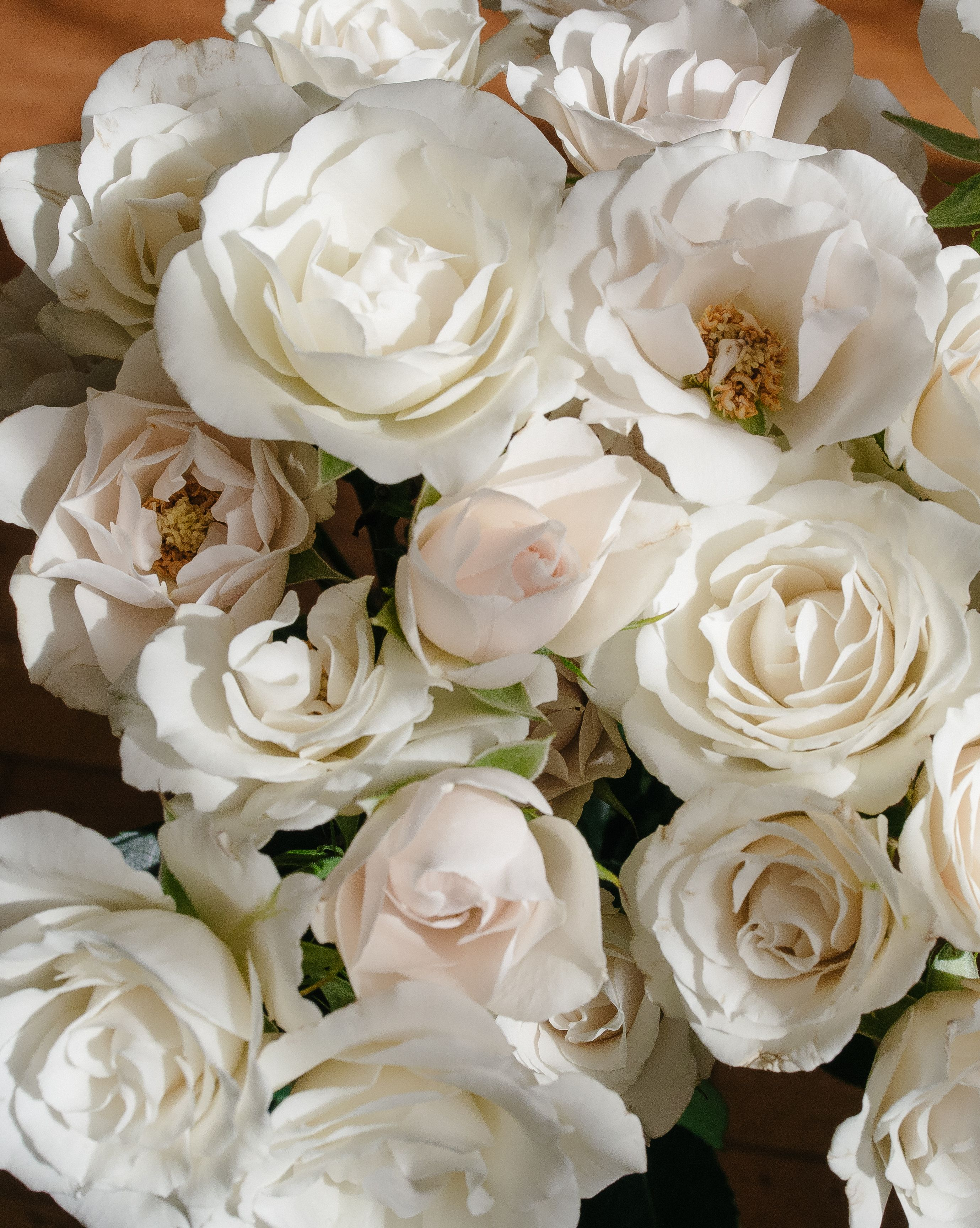 Home White Spray Roses Rose Varieties Wedding Branches
