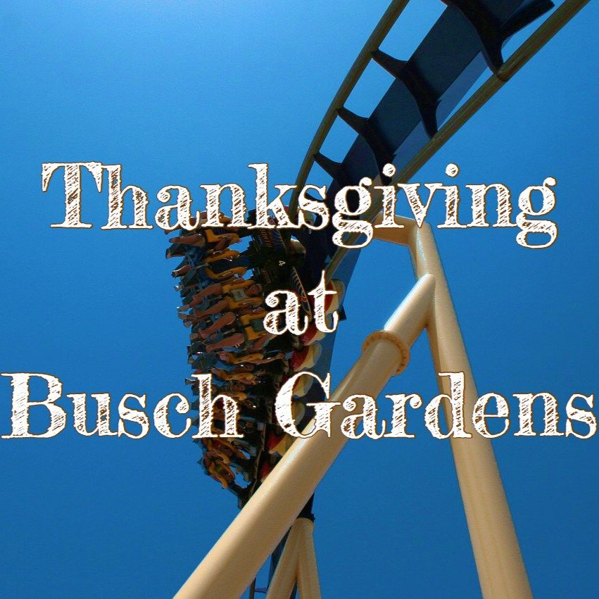 What Time Does Busch Gardens Open On Wednesday