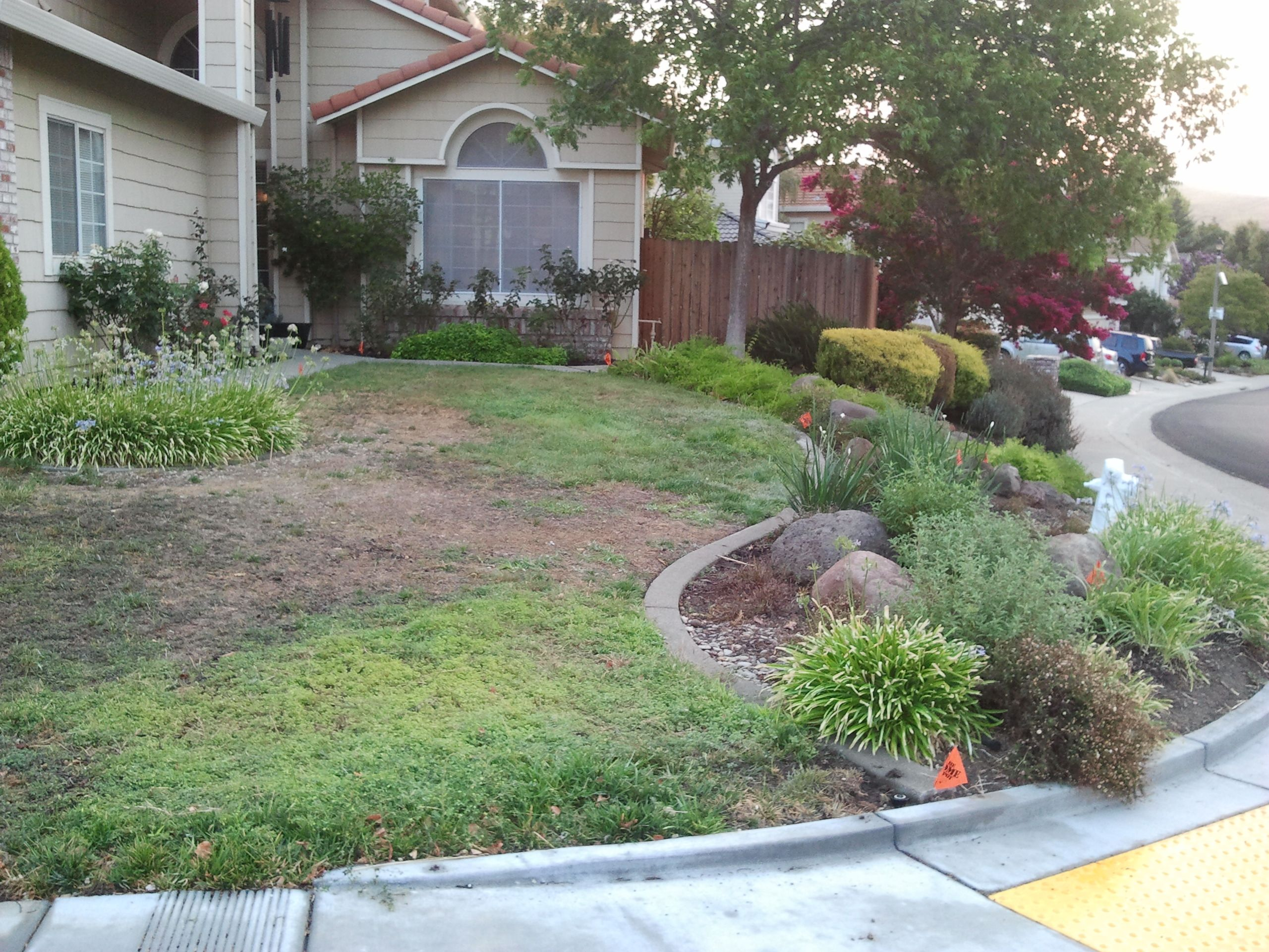 Property View 3   Narrow Deep Lawn With Berm Is Divided By Six Inch  Concrete Curb