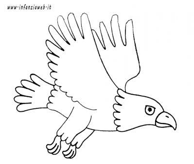 risultati immagini per disegno aquila bambini infanzia da