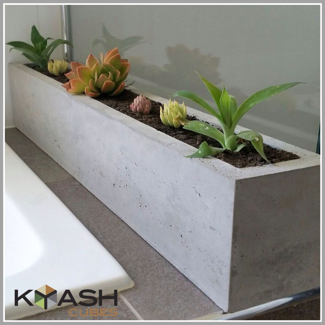 Diy Concrete Planter Box: Pin By Leslie Matlock On Into The Woods
