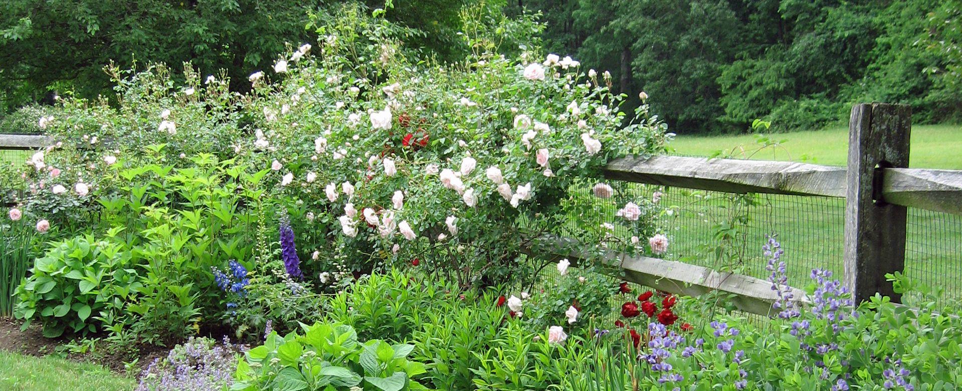 espacios al aire libre ingeniosamente diseñados por el galardonado diseñador de jardines Susan Cohan, APLD