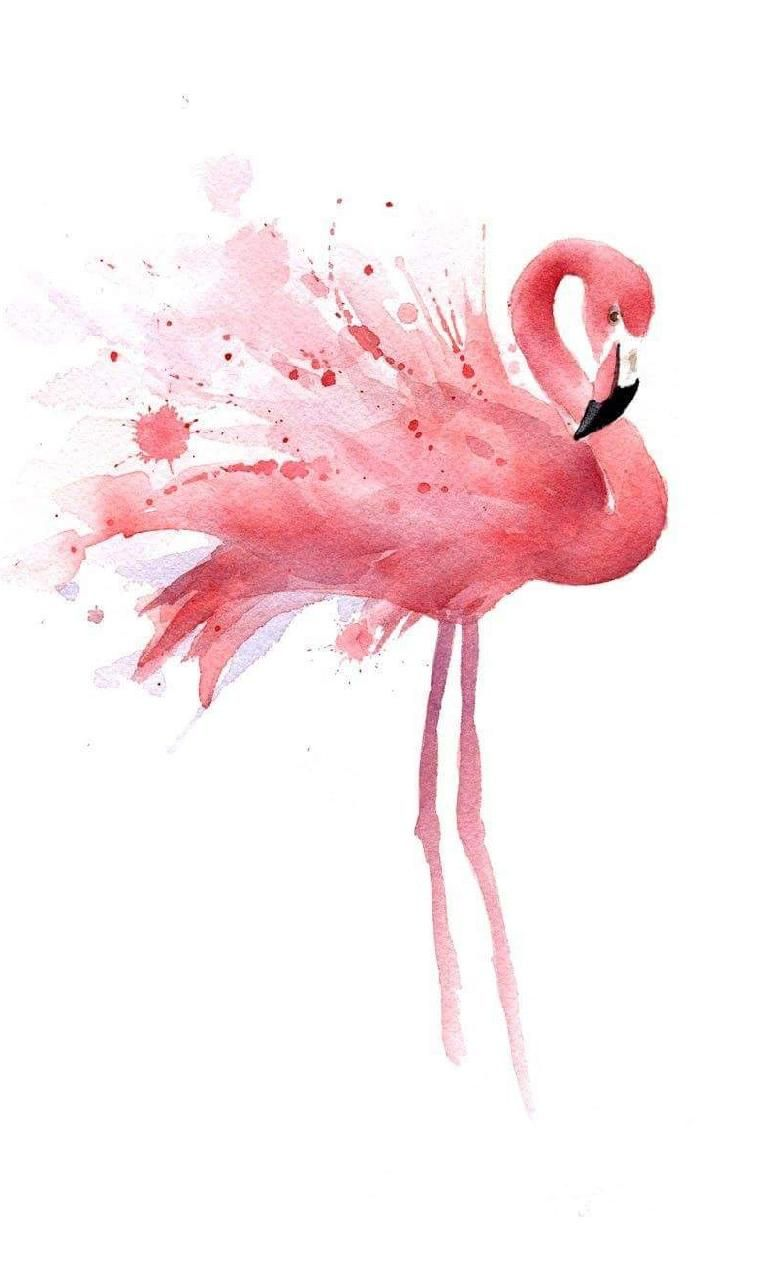 Download Pink flamingo Wallpaper by chichiinka28291 ab
