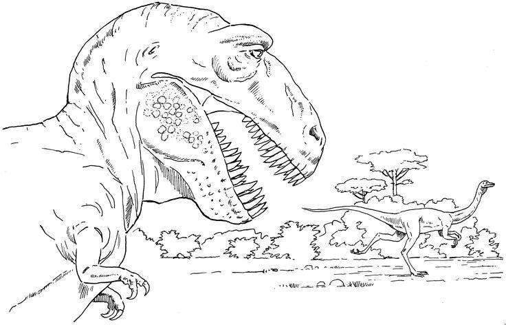 trex ausmalbild  malvorlage dinosaurier ausmalen
