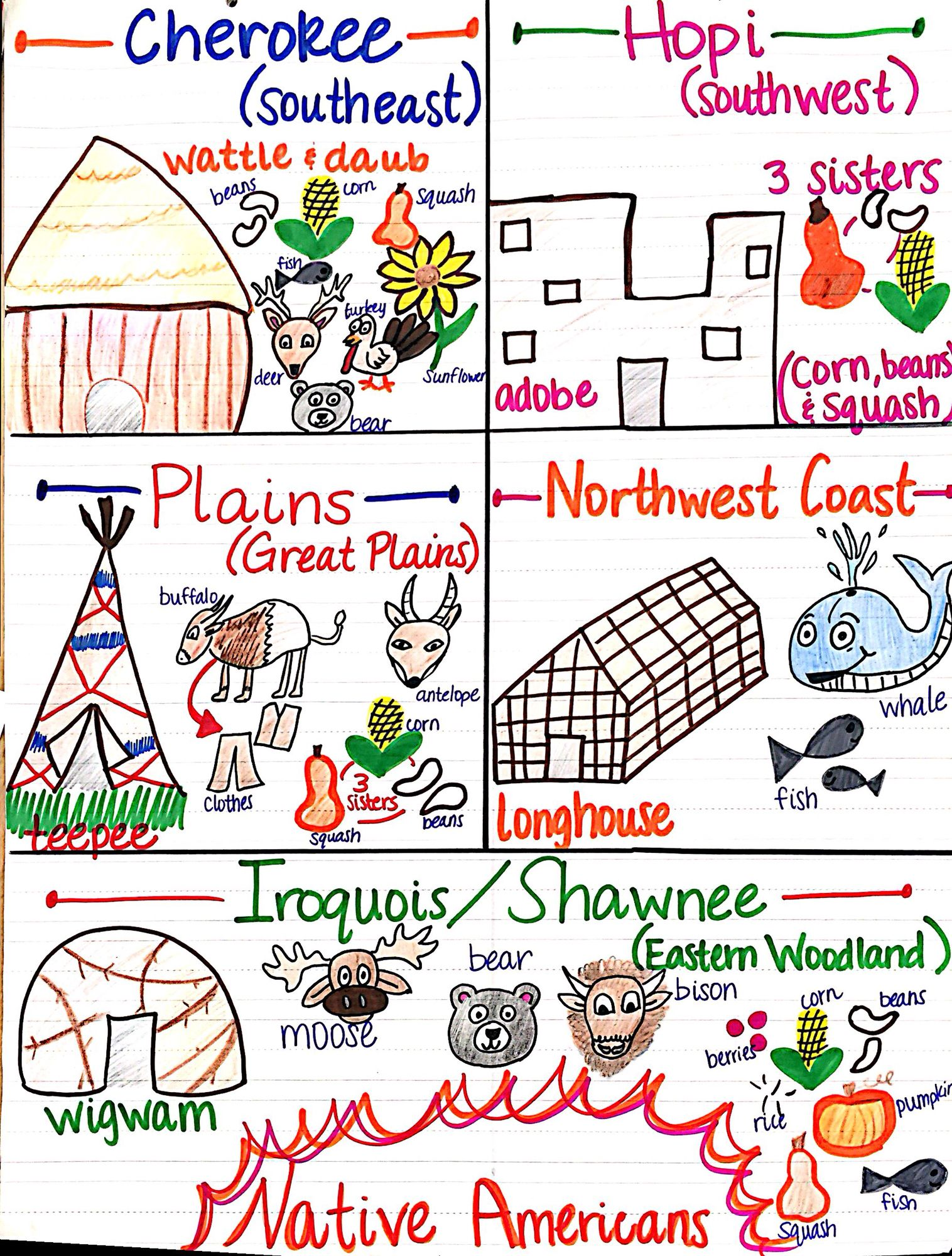 Native american unit anchor chart also pinterest rh